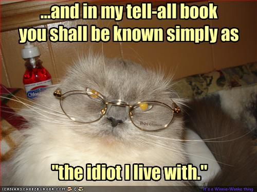 funny-pictures-cat-writes-a-tell-all-book-about-you